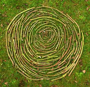 Holz, Kreis, Zyklus, Natur, Foto: Sulamith Sallmann
